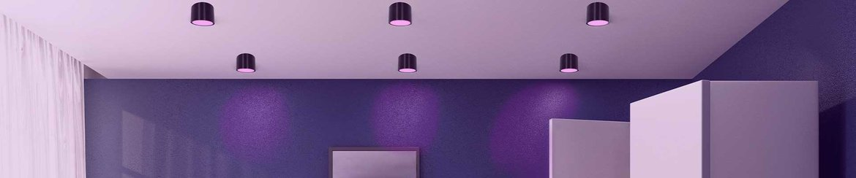 Philips-HUE-Opbouw-Spots