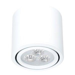 Dimbare Cilinder Vormige LED Opbouw Spot Wit
